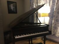 Beautiful Steinmayer Grand Piano (in Rosewood with Ivory Keys, Made in Germany)