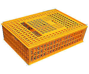 Chicken poultry crates ,brand new