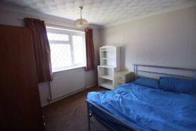 Double Room in pet friendly houseshare