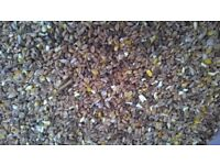 Chicken Poultry feed for laying