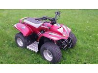 red apache tomahawk 50cc kids quad bike