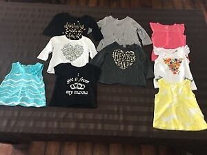 Assorted collections of girl clothing 3-12 months