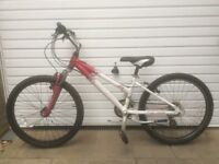 GIRLS RALEIGH BIKE FOR SALE-EXCELLENT CONDITION-FREE DELIVERY