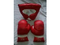 Kids Boxing Gloves and headgear