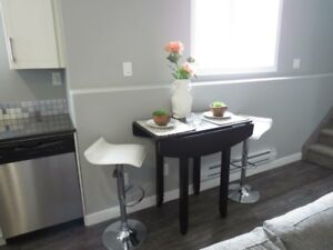 Gorgeous Bright 2 Bedroom Suite