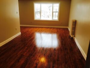 LARGE EXECUTIVE 2 BDRM APT GREAT STREET DOWNTOWN CHTOWN SEPT 1