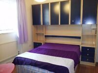 Lovely Bright Double Bedroom - near Oval Tube and Bus Stations