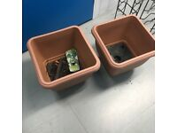 Two large plastic tubs