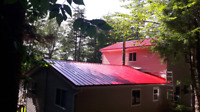 Steel roofs and renovations!