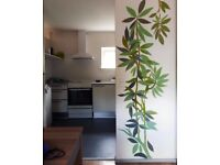 Professional Paintings & Murals