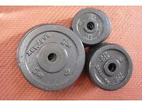 weight plates - bodymax - clean glazed cast-iron discs