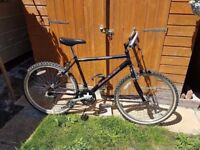 Raleigh Bicycle in Excellent Condition