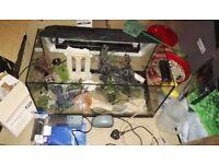 Rena Aquarium (Fish Tank) 60L