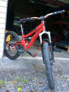 2005 specialized big hit grom size L