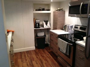 1 Month Free BEAUTIFUL RENOVATED SUITE