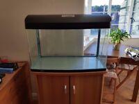 Complete Fish Tank Set for Sale – 165L Aqua One Aquastyle 850
