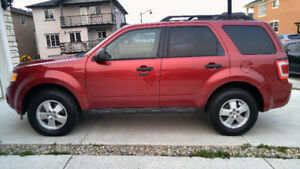 2012 Ford Escape XLT 4 Cyl