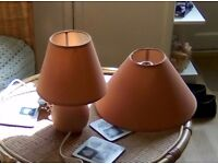 Matching ceiling shade and table lamp and shade in a rust colour.