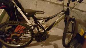 "Girl's 24"" mountain bicycle"
