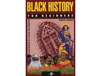 Black History For Beginners Paperback by Denise Dennis