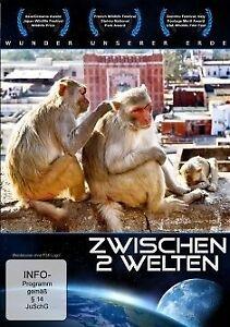Wunder unserer Erde - Zwischen 2 Welten (2013) - DVD - Neu - OVP - Neu - Deutschland - Vollständige Widerrufsbelehrung 5 Widerrufsrecht für Verbraucher Verbraucher ist jede natürliche Person, die ein Rechtsgeschäft zu Zwecken abschließt, die überwiegend weder ihrer gewerblichen noch ihrer selbständigen beruflichen Täti - Deutschland