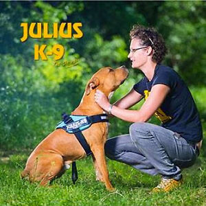 Dog Harnesses - Easy to fit and adjustable harnesses - Julius K9