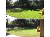 🌼 Grass cutting -Lawn Mowing - Garden maintenance , Tidy up, Gardening services - Local gardener
