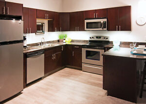 Java style full wood kitchen - $500 off with coupon