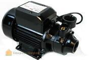 Electric Oil Transfer Pump