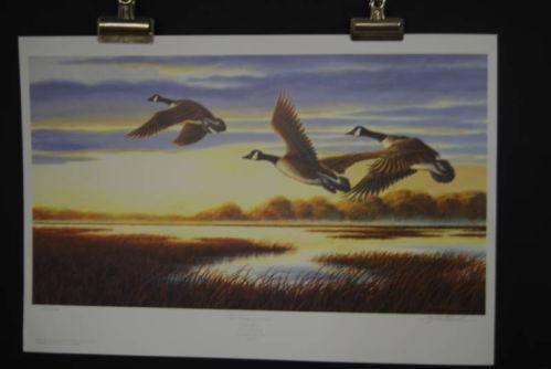 Ducks Unlimited Prints Ebay