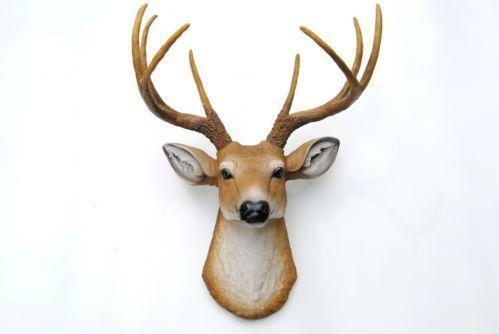 Deer Head Wall Ebay