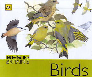 AA-Best-of-Britains-Birds-Beautifully-Illustrated-Guide-to-Over-250-Species
