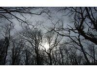 Winter Fayre in Lowdham on 10th Dec