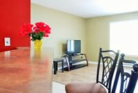 ROOM $495 Avail EVERYTHING INCLUDED 5 min walk to U de M-8curry