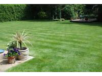 Lawn mowing, Garden Clearance , and more.