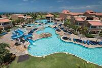 Aruba Vacation at Divi Village Golf & Beach Resort