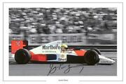 Ayrton Senna Signed