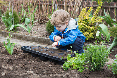 Half term is an ideal time for green-fingered youngsters