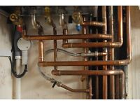 Mike's Plumbing and general building services