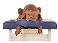 Professional massage therapist Oxford