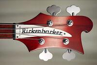 Bassiste pour Classic / Hard / Prog Rock
