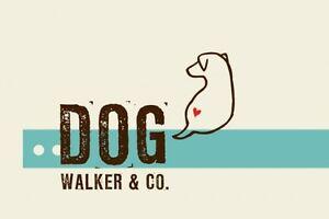 The Collingwood Dog Walker Company