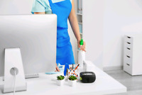 2 office cleaners