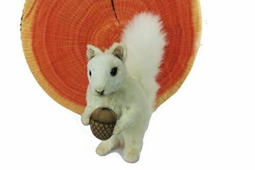 """Hansa White Squirrel with Nut 7"""" H"""
