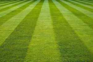"""""""THE A TEAM MOWING"""" AFFORDABLE. RELIABLE. PROFESSIONAL Chermside Brisbane North East Preview"""