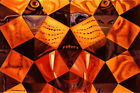 Salvador Dali Home Décor Posters