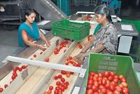 HIRING: Produce Inspectors paid WEEKLY!
