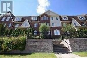 Mississauga beautiful 2+1 townhouse for lease ( six months term)
