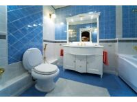 FULL BATHROOM/TOILET CLEANING - SPRING OFFER!!!