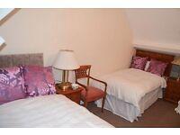 Single Bed Hotel quality divan